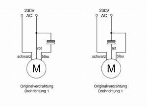 Drehzahlregelung 230v Motor Mit Kondensator : 230v motorseilwinde aus dem baumarkt ber controller steuern roboternetz forum ~ Yasmunasinghe.com Haus und Dekorationen
