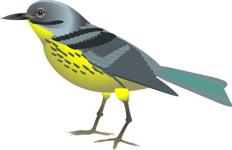 Clipart Bird Bird Clip Royalty Free Animal Images Animal Clipart Org