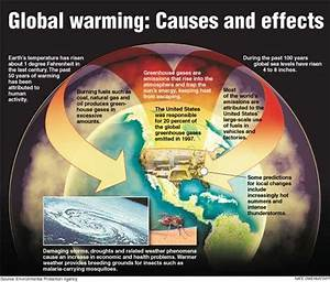 This Diagram Explains The Causes And Effects Of Global