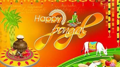 Pongal Happy Wallpapers Ultra 4k Imo Whatsapp