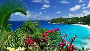Forum Croisiere Ocean Indien : les plus belles destinations de l 39 oc an indien ~ Medecine-chirurgie-esthetiques.com Avis de Voitures