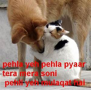 Hindi Funny Pictures, Images, Graphics - Page 72