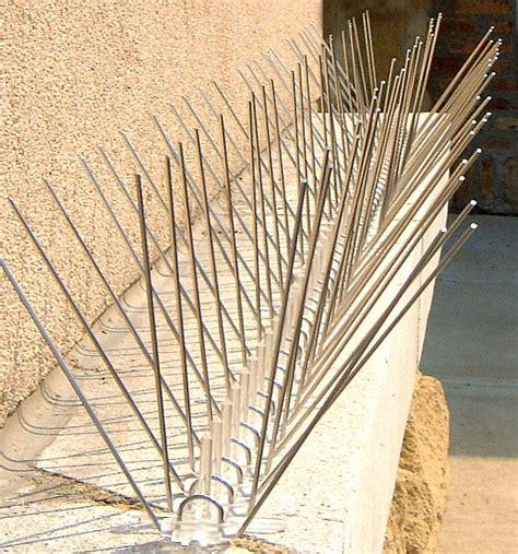 bird netting for bird spikes roost inhibitor at birdxcanada com