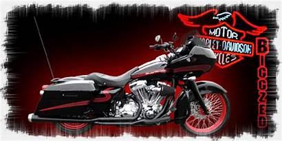 Wheels Harley Davidson Reply Albums Touring