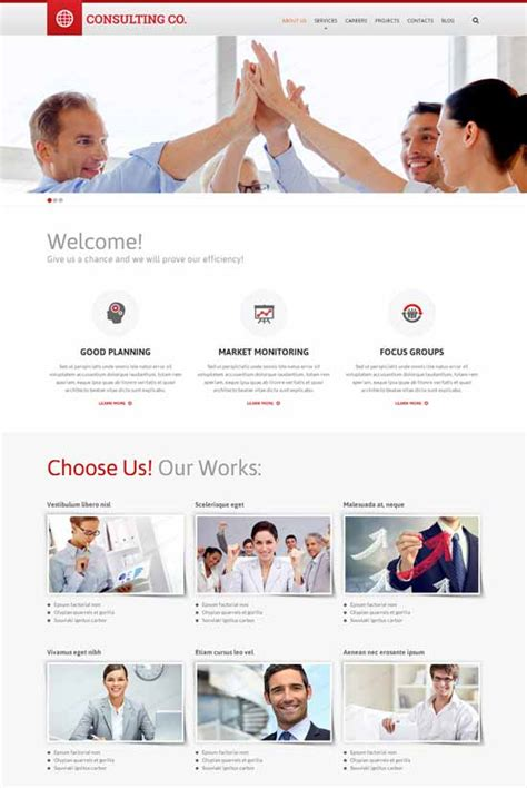 B Consulting Template by Best Business Consulting Website Templates Free Premium