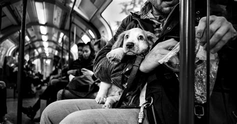 street photographer travels  world portraying