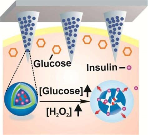 skin patch automatically releases insulin  control blood