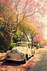 beautiful, car, nature, photography - image #777214 on ...