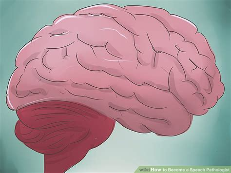 How To Become A Speech Pathologist (with Pictures)  Wikihow. Truck Insurance Estimate Olive Branch Funding. What Mutual Funds To Invest In. Recovering From A Tummy Tuck. Installing Surround Sound Dentist Toledo Ohio. Fda Compliance Consultants Do I Have Bipolar. Proton Cancer Treatment Centers. Online Erp Systems For Small Business. Fruity Loops Music Program Vonage Vs Comcast