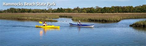 Hammocks State Park Nc by Hammocks State Park Nc State Parks