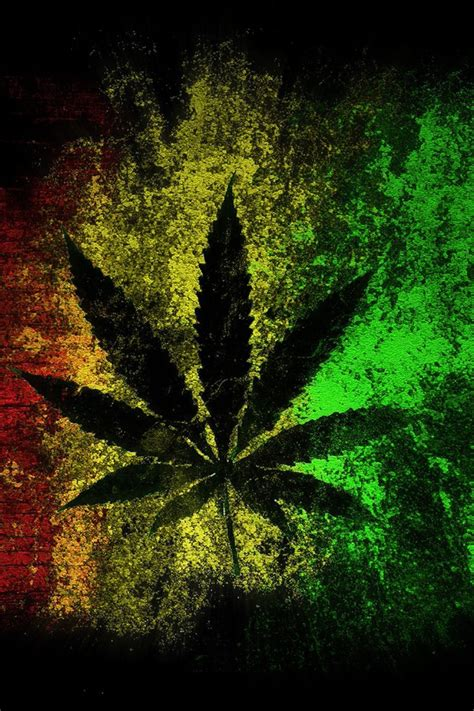 jamaica artwork black background digital art leaves