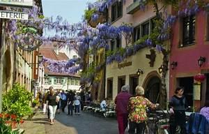 Frühstück In Freiburg : green city hotel vauban freiburg ~ Orissabook.com Haus und Dekorationen