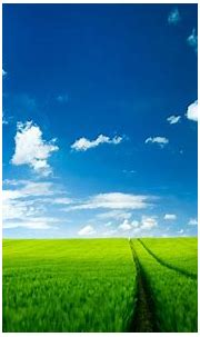 Background Nature ·① Download free stunning HD backgrounds ...