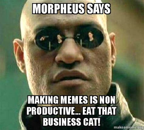 Morpheus Cat Meme - morpheus says making memes is non productive eat that business cat matrix morpheus make