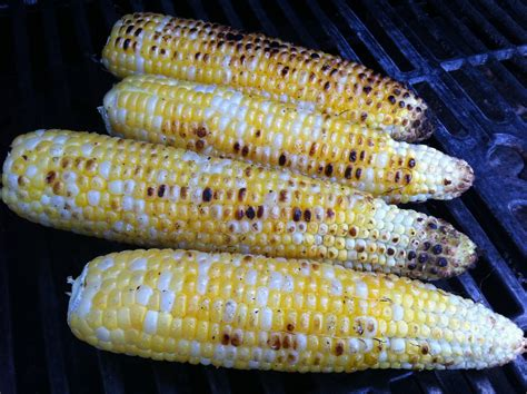 boil corn in husk the best way to cook corn on the cob on the grill no husks thrifty recipes