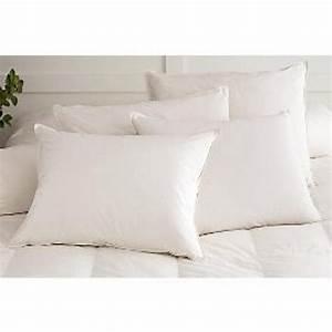 best reviews of hypoallergenic goose down pillows r1629fb With best goose down pillows reviews