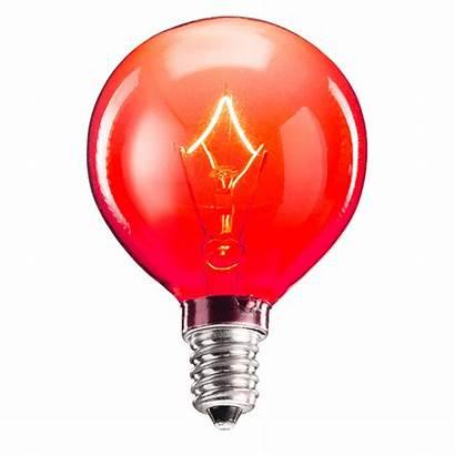 Bulb Scentsy Watt Warmer Bulbs Chart Colored
