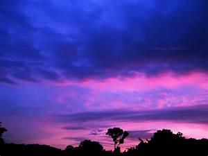 44, Purple, And, Pink, Sunset, Wallpaper, On, Wallpapersafari