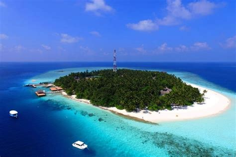island resort fihalhohi maldives malediven snorkeling resorts hotel indian ocean meal sie maldivepertutti
