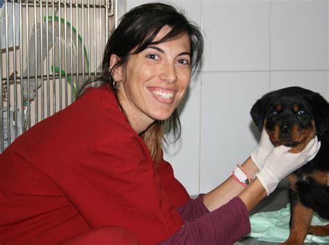 hospital veterinari animalia quienes somos