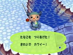 Bitterling Animal Crossing Wiki Fandom Powered By Wikia