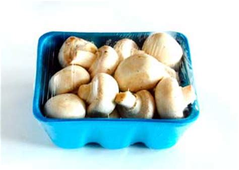how to store mushrooms contact support