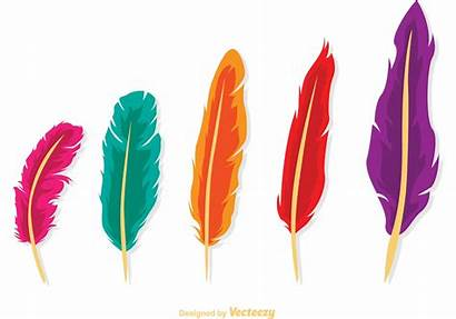 Feather Clipart Plumas Pack Isolated Colores Vectores