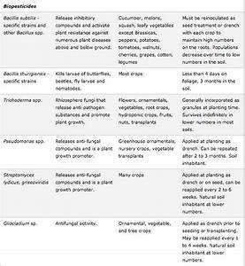 Similarities Between Plants And Fungi