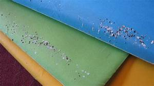 How To Clean Up Spider DroppingsMaybe Colonial Pest Control