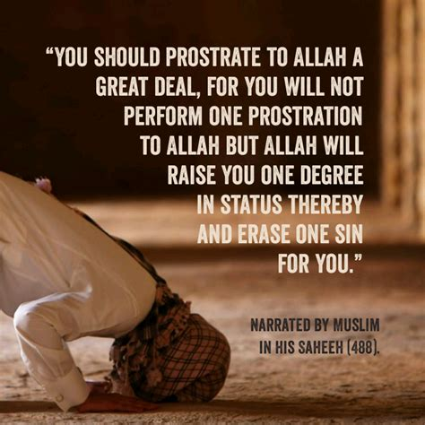 prostrate  allah message  islam