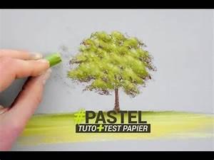 Peindre Au Pastel : peindre un arbre au pastel tuto et test papier youtube ~ Melissatoandfro.com Idées de Décoration