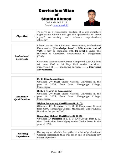 curriculum vitae layout template professional curriculum vitae format template