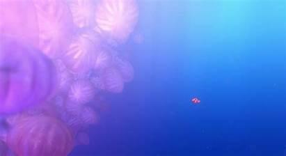 Nemo Finding Disney Stills Jellyfish Wallpapers Scene