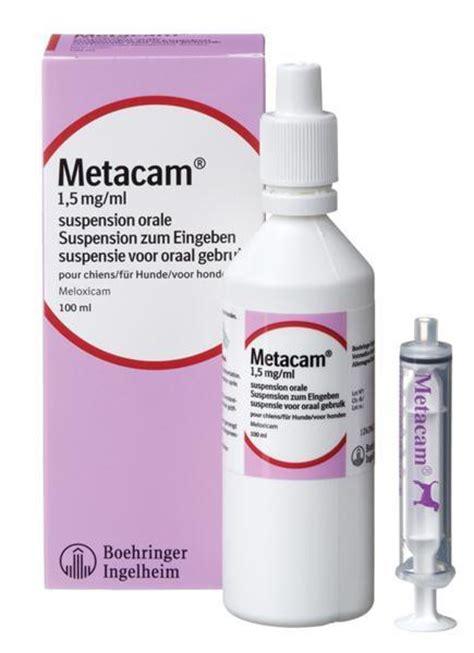 metacam oral  dogs ml buy   vet post