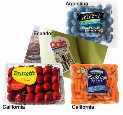 Fruits Vegetables Agclassroom Agriculture Variety Matrix Foods