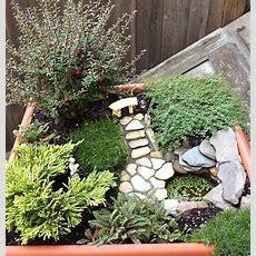 November  2012  The Mini Garden Guru From Twogreenthumbscom
