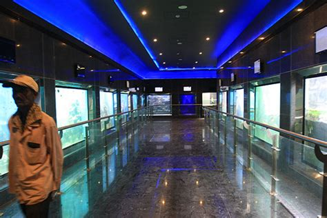 taraporewala aquarium mumbai a whole taraporewala aquarium mumbai one day picnic spots destinations in india