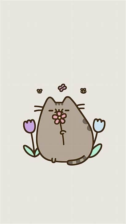 Pusheen Cat Kawaii Wallpapers Fondos Flowers Flower