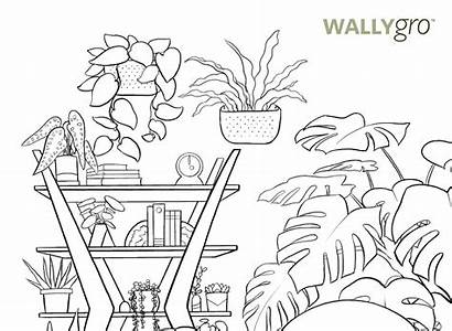 Coloring Plant Sheets International Adults Appreciation Printable