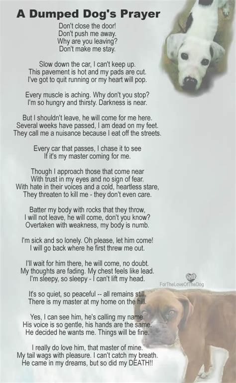 Dog Prayer Poem