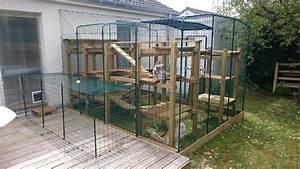 Construire Enclos Pour Chats : grand enclos pour chats chats omlet ~ Melissatoandfro.com Idées de Décoration