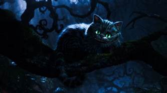 cheshire cat in cheshire cat cats