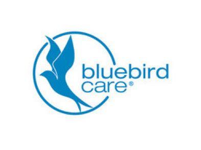 bluebird care jobs special  assistant dublin