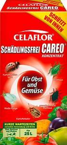 Celaflor Schädlingsfrei Careo Konzentrat : celaflor celaflor sch dlingsfrei careo konzentrat f r obst gem se 250 ml bloomling ~ A.2002-acura-tl-radio.info Haus und Dekorationen