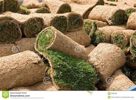 Grass Rolls 1 Royalty Free Stock Image