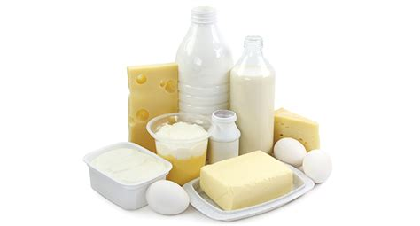 Food Safety Best Practices for Milk and Dairy Products