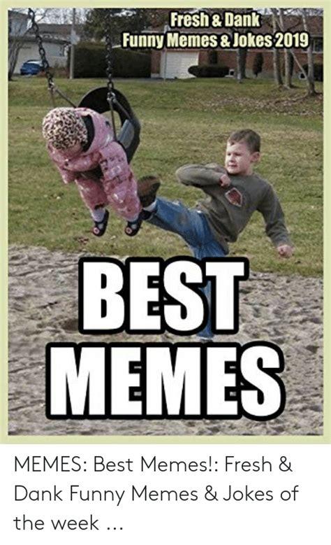 freshdank funny memes jokes   memes memes