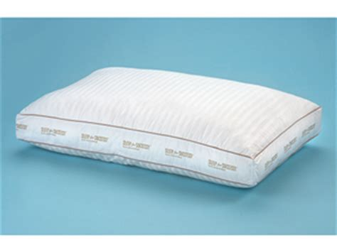 sleep for success pillow sleep for success pillow by dr b maas review