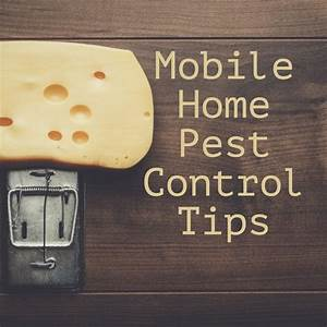Mobile Home Pest Control Tips