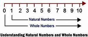 Whole Numbers And Its Properties